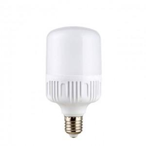 E27 10W LED BULB
